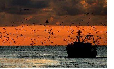 Sottoscritto CCNL – Contratto Collettivo Nazionale di lavoro per gli imbarcati su natanti di cooperative di pesca tra UN.I.COOP. – UGL.