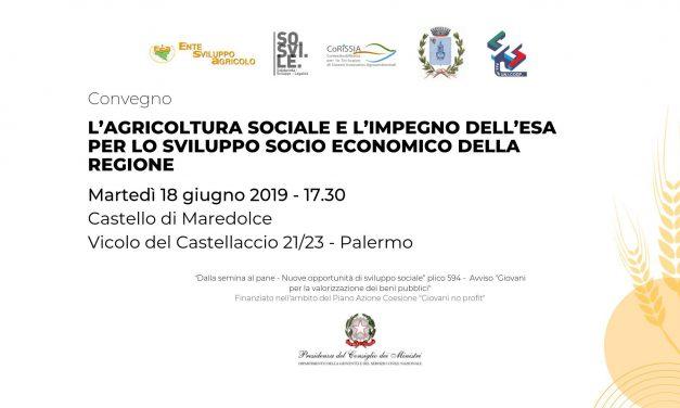Convegno Impresa sociale e bioagricoltura | Esperienze a confronto
